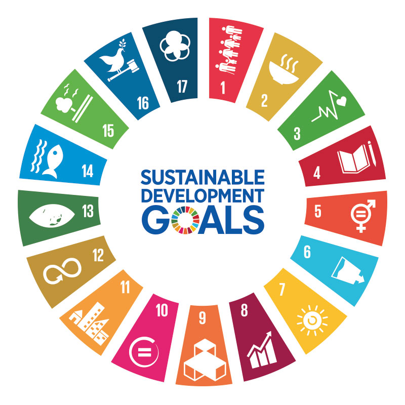 Link to UN Sustainable Development Goals